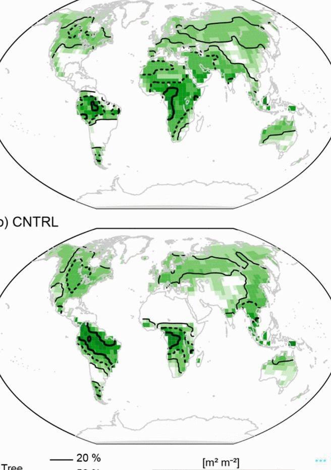 "Forest density with the Earth spinning normally (bottom) and backward, or ""retrograde"" (top)."